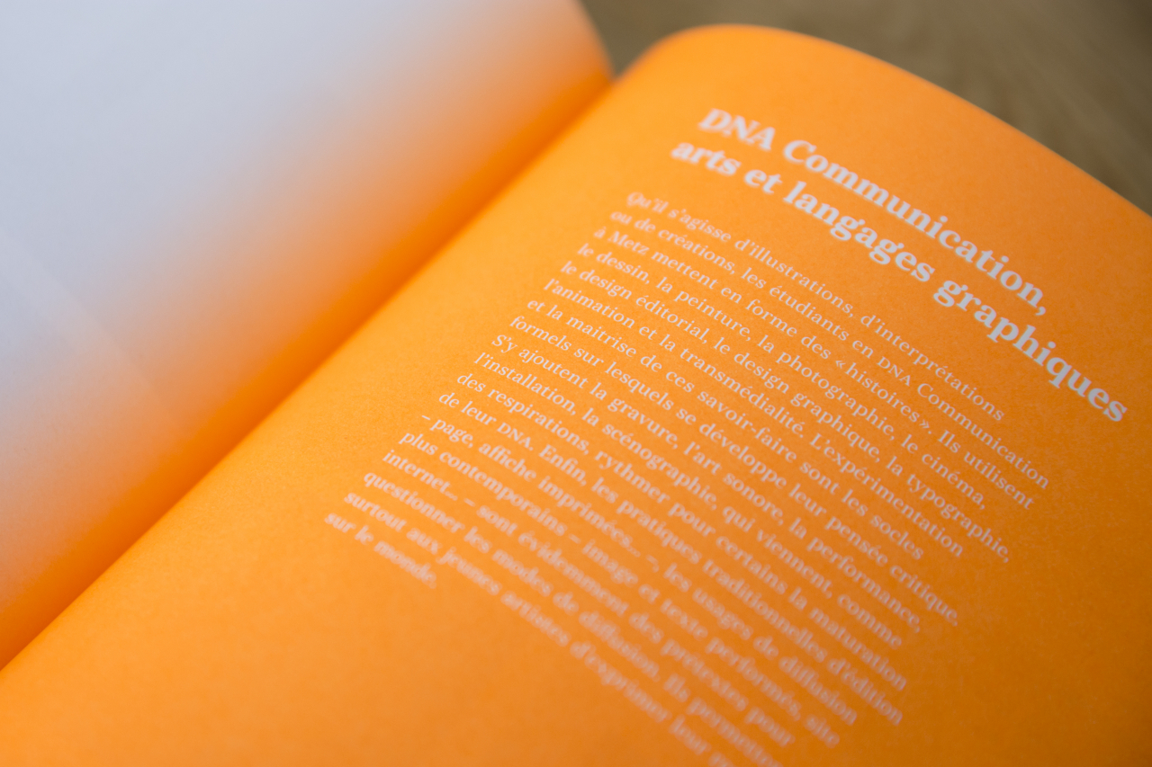 Catalogue des diplômes 2018 image #8