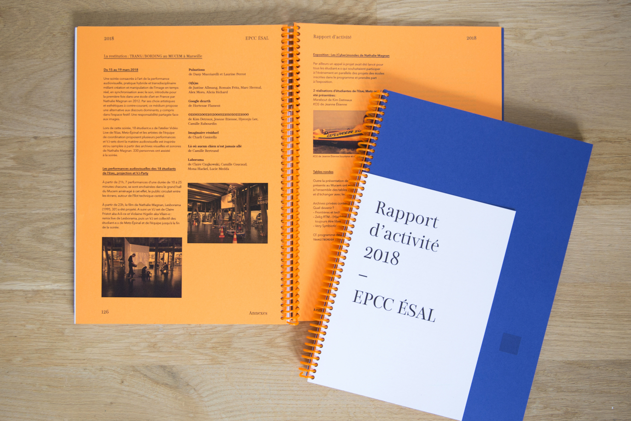Rapport d'activité ÉSAL 2018 image #4
