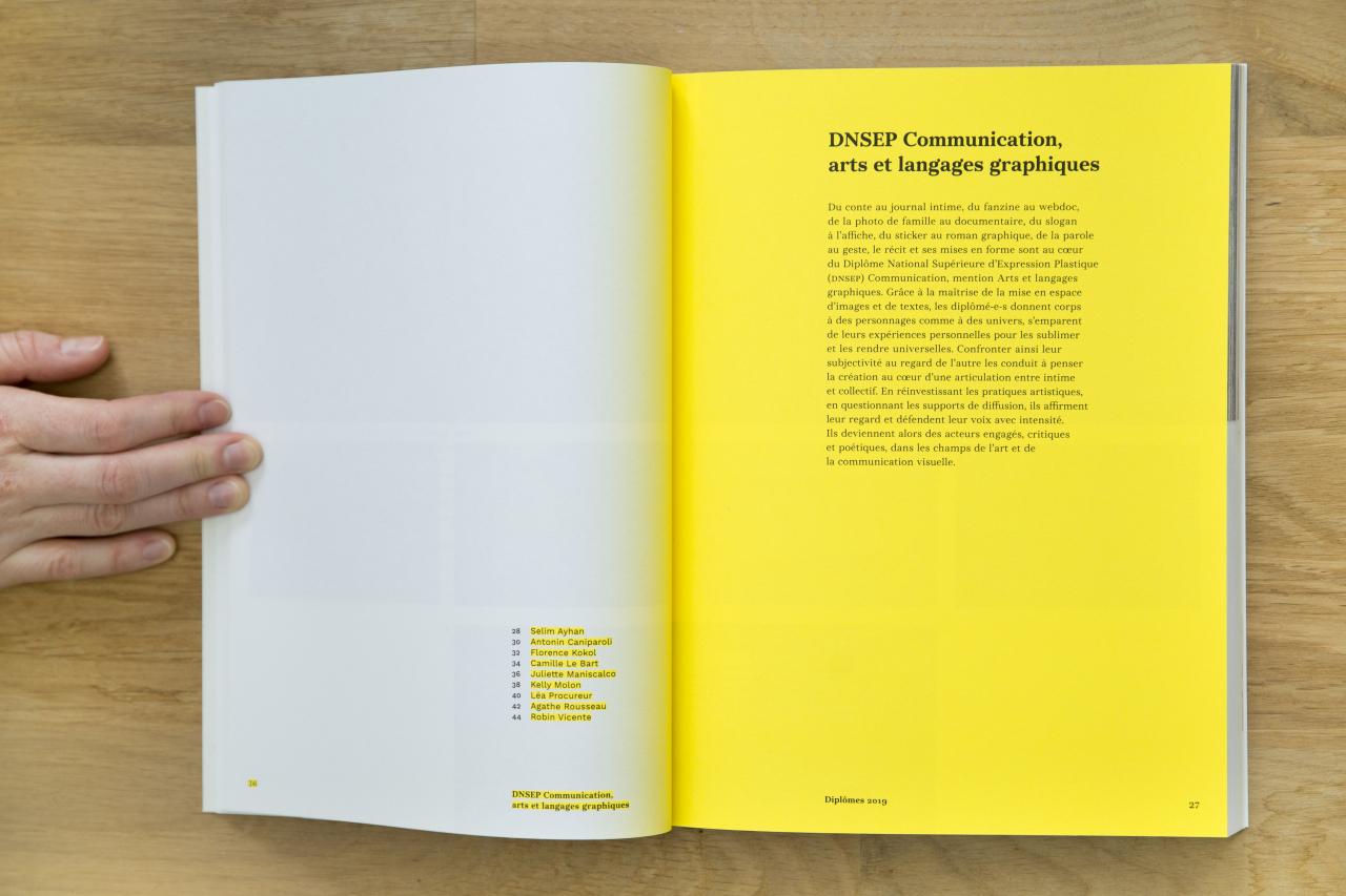 Catalogue des diplômes 2019 image #4