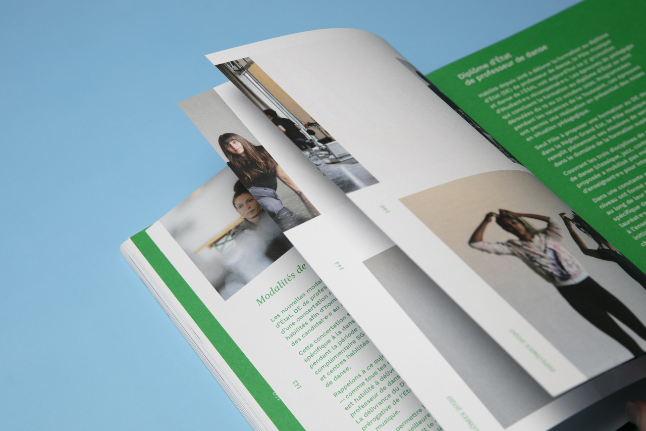 Catalogue des diplômes 2020 image #12
